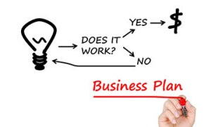 Developing and Implementing the Business Plan