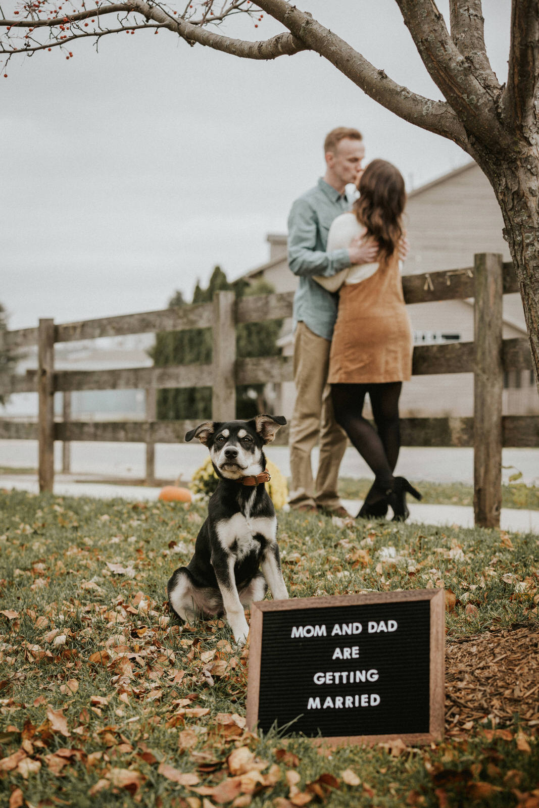 downtown iowa city engagement session