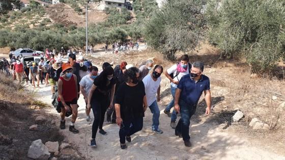 הצבא ביטל ברגע האחרון מסיק משותף פלסטיני-ישראלי בכפר קליל