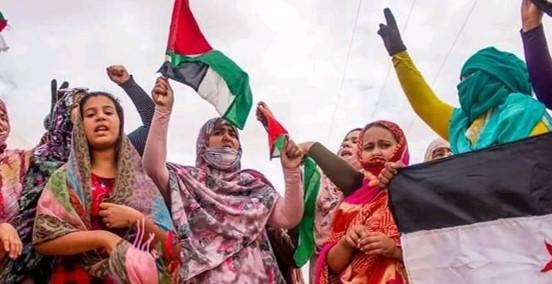 מאיימת לשגר חיילים: ממלכת מרוקו נגד התנועה לשחרור הסהרה המערבית שתחת כיבוש