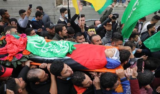 """האו""""ם: תוך שבועיים חיילים הרגו ילד ונהג ופצעו 206 פלסטינים ברחבי הגדה"""