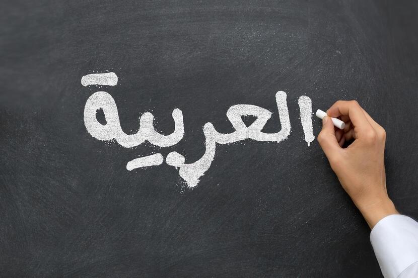 """חד""""ש בחיפה דורשת הקמת ועדה עירונית להרחבת לימוד ערבית וקידום חינוך דו-לשוני"""