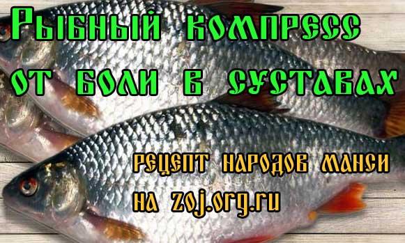 Рыбный компресс от боли в суставах