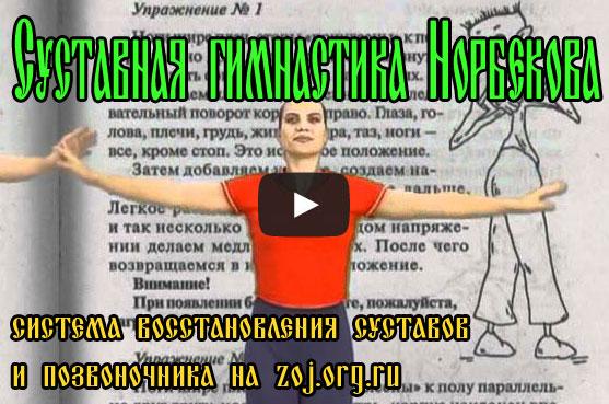Суставная гимнастика М С Норбекова