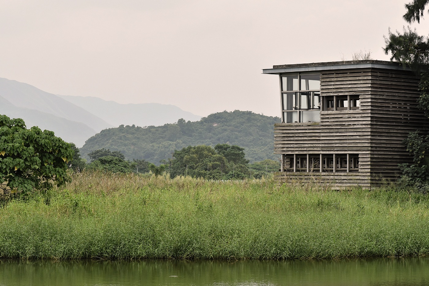Signs Of Spring In Urban Wetland Little >> A Visit To Hong Kong S Surprising Wetland Park Zolima City Magazine