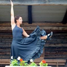 Flamenco i Bonnstan