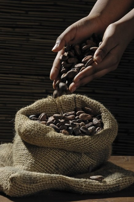 cocoa-beans-499970_960_720