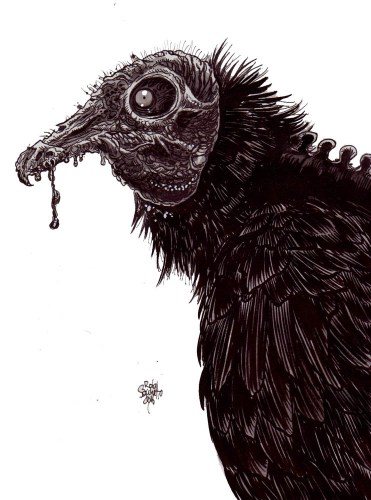 Zombie Art : Zombie Vulture : Zombie Art by Rob Sacchetto