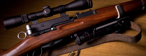 GUN EXPERT RANKS ZOMBIE FIREARMS