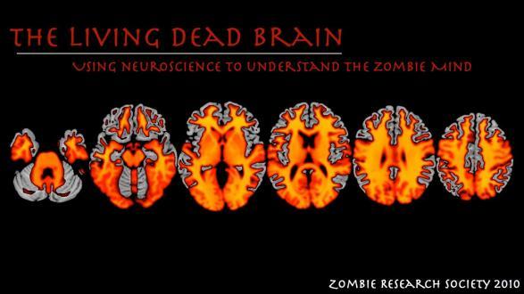 Zombie Brain Image