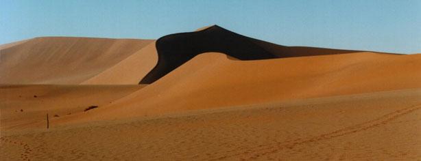 THE DANGERS OF THE DESERT