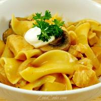 Chicken Stroganoff for Two - easy, creamy and delicious!
