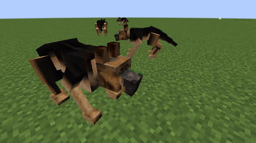 Animalium-Mod3