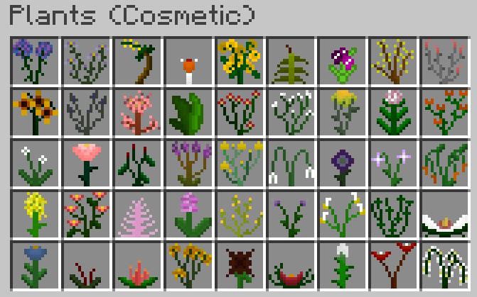 Plants-Mod-1