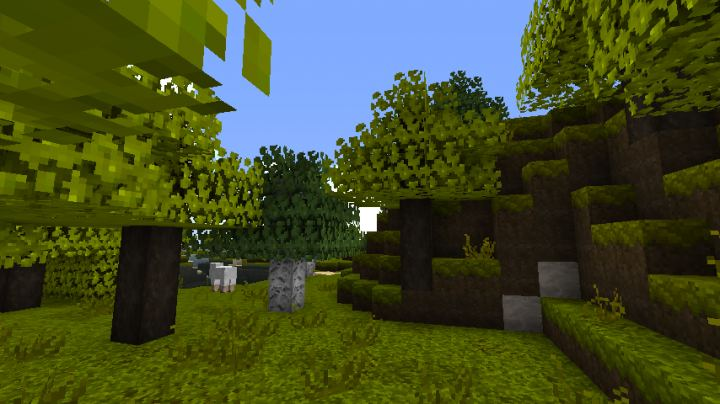 Summer Day Texture Pack 3