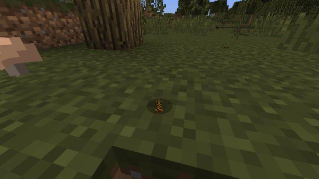 Wild Lands 2 Mod 4