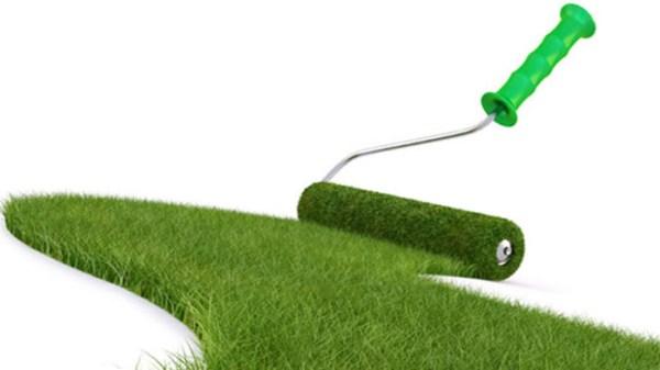 Как сажать газонную траву - подготовка участка под газон ...