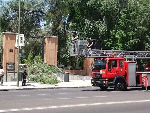Los bomberos llegan al parque - A. Molla (Zonaretiro.com)