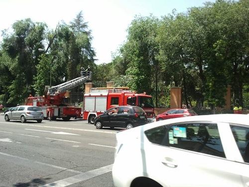 Tras retiras las ramas, los bomberos limpiaron la zona - A. Molla (Zonaretiro.com)