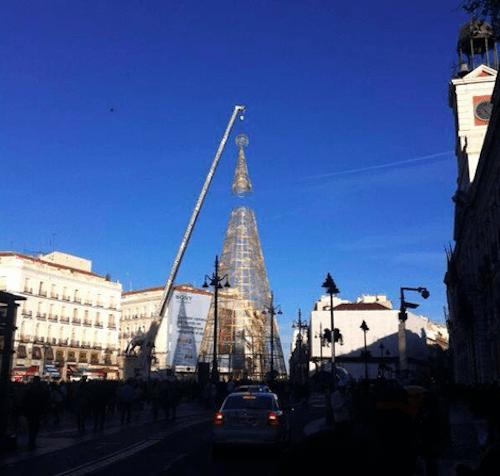 Colocación del árbol este domingo 10 de noviembre - L. Fernández (Zonaretiro.com)