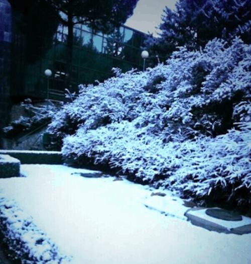 Nieve en Trescantos - L. Torres