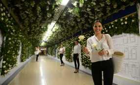 Rosas en el metro 1