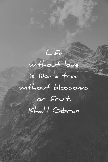 400 Deep Quotes That Will Make You Think  In New Ways  deep quotes life without love is like a tree without blossoms or fruit  kahlil gibran wisdom