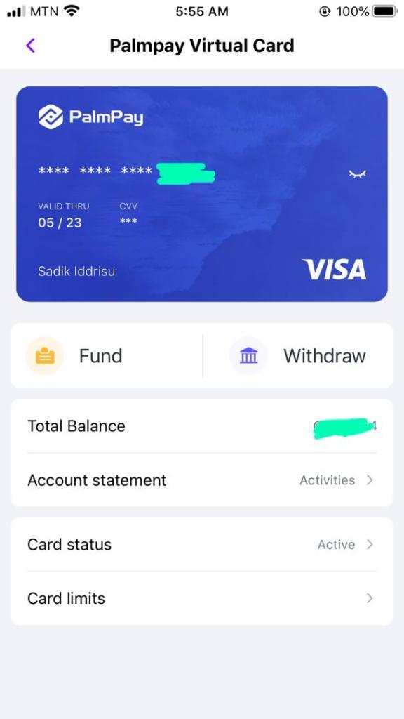 Palmpay virtual card