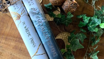 De verbannen koningin book-tag