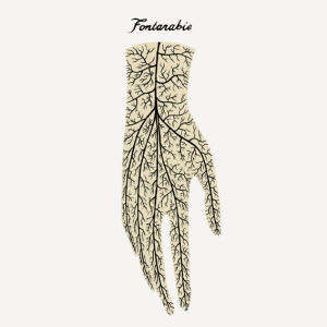 Fontarabie - Fontarabie