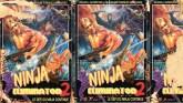 Ninja Eliminator II