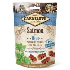 Лакомство для кошек Carnilove Salmon with Mint 50 г (для зубов)