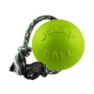Jolly Pets Мяч З КАНАТОМ ROMP-N-ROLL