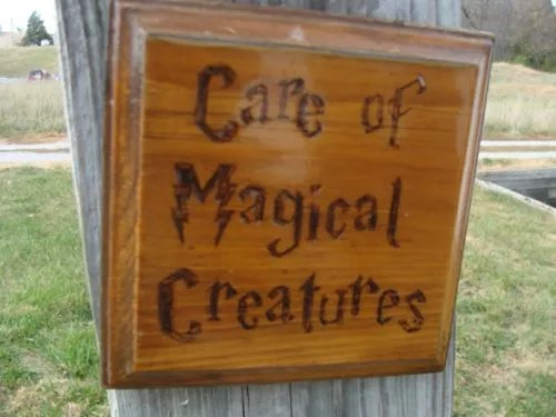 Care of Magical Creatures, Muggle Edition