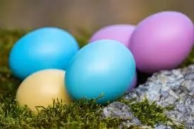 "Earth Month Conservation ""Easter Egg"" Hunt"