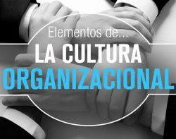 Elementos que componen la Cultura Organizacional