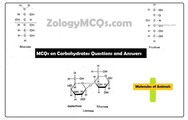 MCQs on Carbohydrates Questions and Answers
