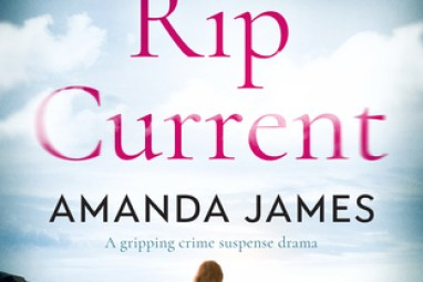 #BookReview – Rip Current by Amanda James @akjames61 @Bloodhoundbook