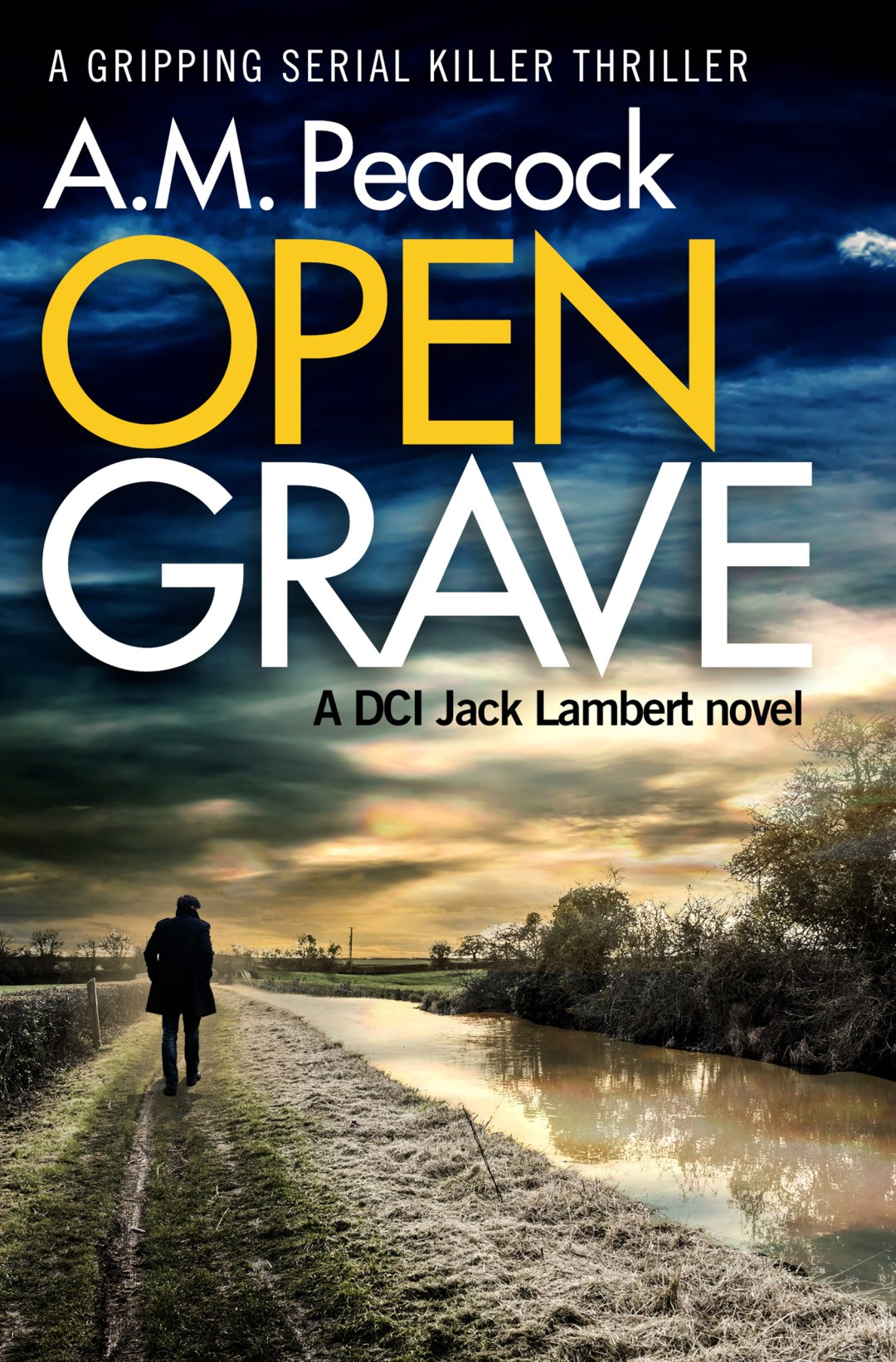 #BookReview of Open Grave by A.M Peacock @ampeacockwriter @bloodhoundbook #opengrave #netgalley