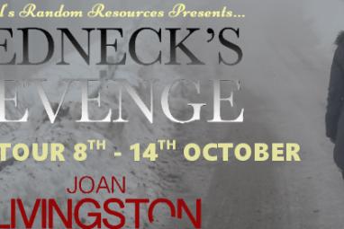 #GuestPost from Joan Livingston, author of Redneck's Revenge @joanlivingston @rararesources
