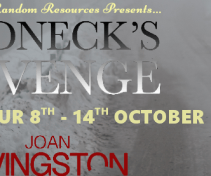 #GuestPost from Joan Livingston, author of Redneck's Revenge @joanlivingston @rararesources