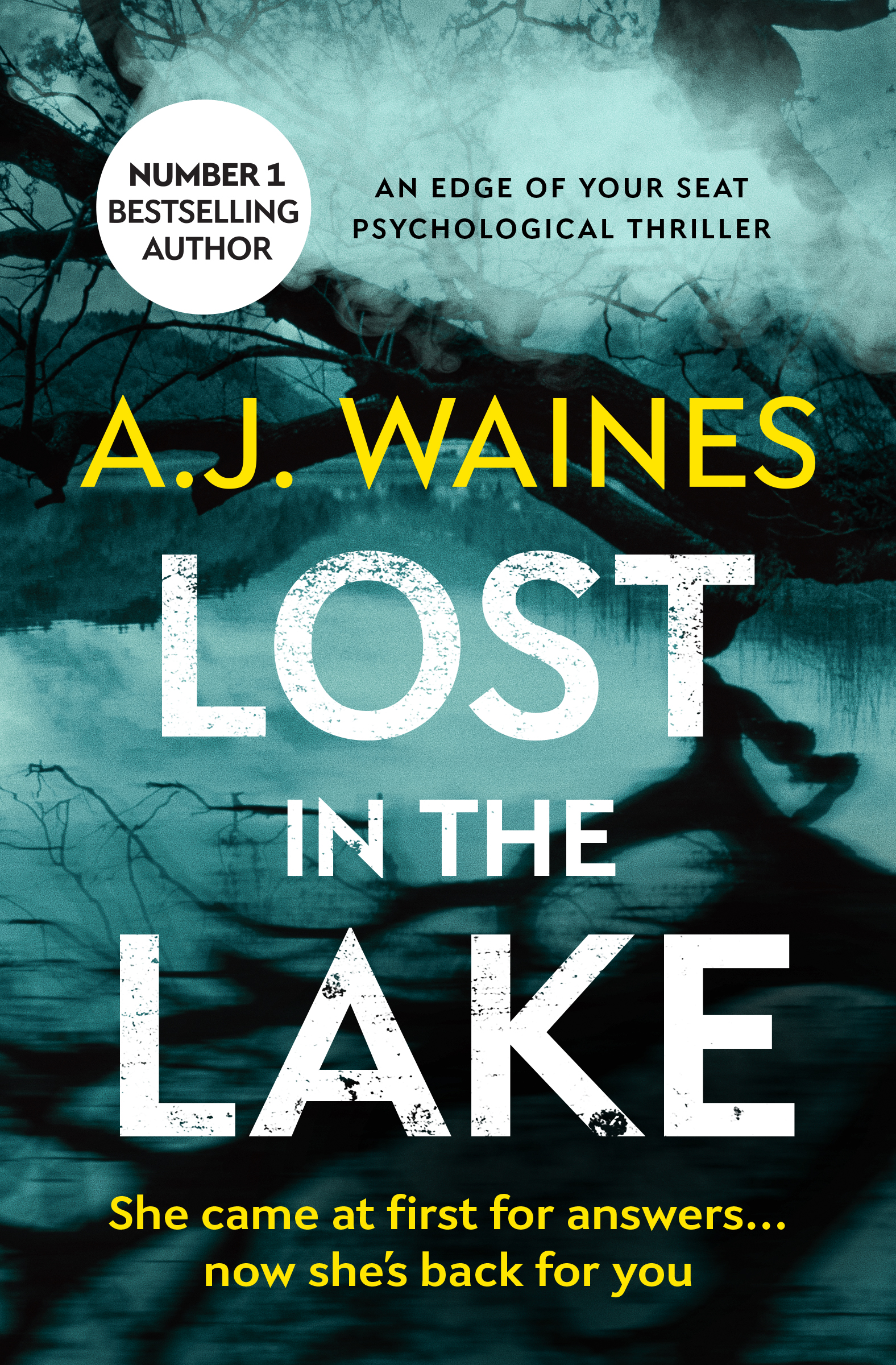 #BookReview of Lost in the Lake by A.J Waines @ajwaines @bloodhoundbook