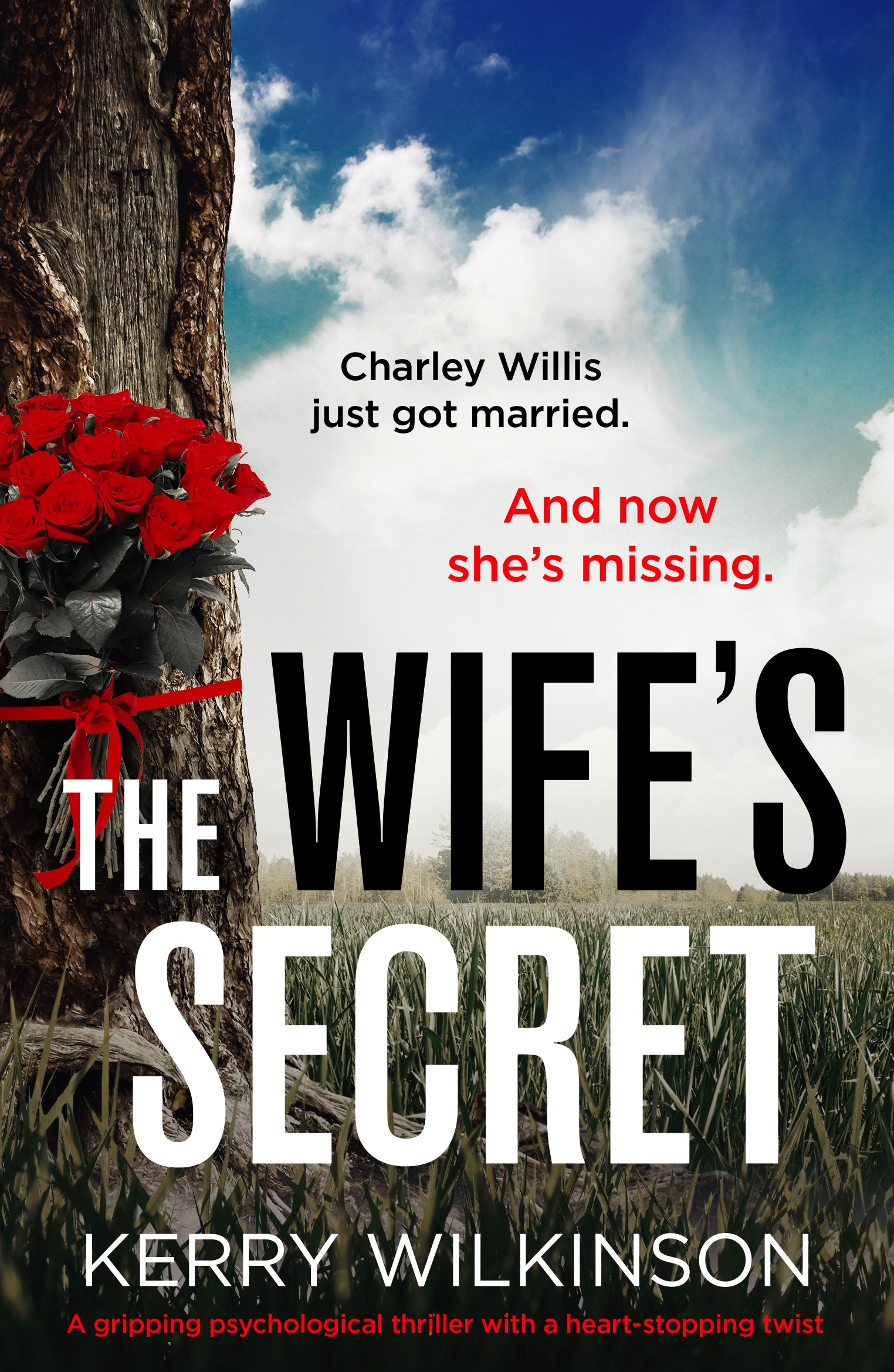 #Excerpt from The Wife's Secret by Kerry Wilkinson @kerrywk @nholten40 @bookouture