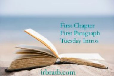 First Chapter First Paragraph Tuesday Intros: The Diary by Vikki Patis