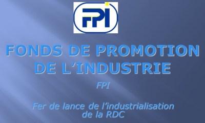 RDC : Le FPI recrute un Consultant chargé d'audit des systèmes d'information 9