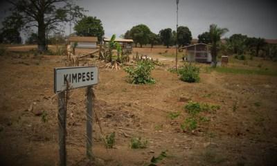 RDC : Une nouvelle cimenterie bientôt opérationnelle à Kimpese ! 13