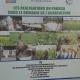 RDC : 75 millions USD additionnels pour appuyer la relance du secteur agricole! 10