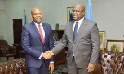 RDC : les trois messages de Tony Elumelu à Felix Tshisekedi ! 7
