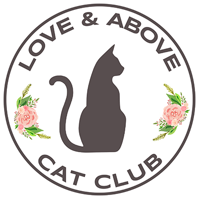 photo of Love & Above Cat Club