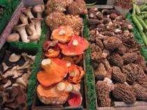 Porcini, lion's mane, morel, lobster and oyster mushrooms
